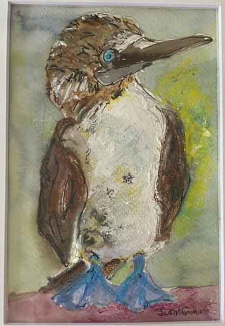 Susan Graham, Parrot, Portsmouth Arts Guild